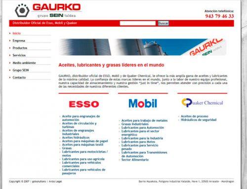 Gaurko grupo SEIN